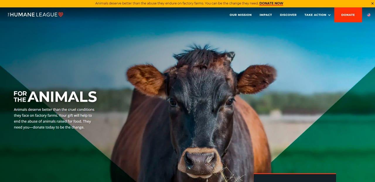 Humane League Charity Website