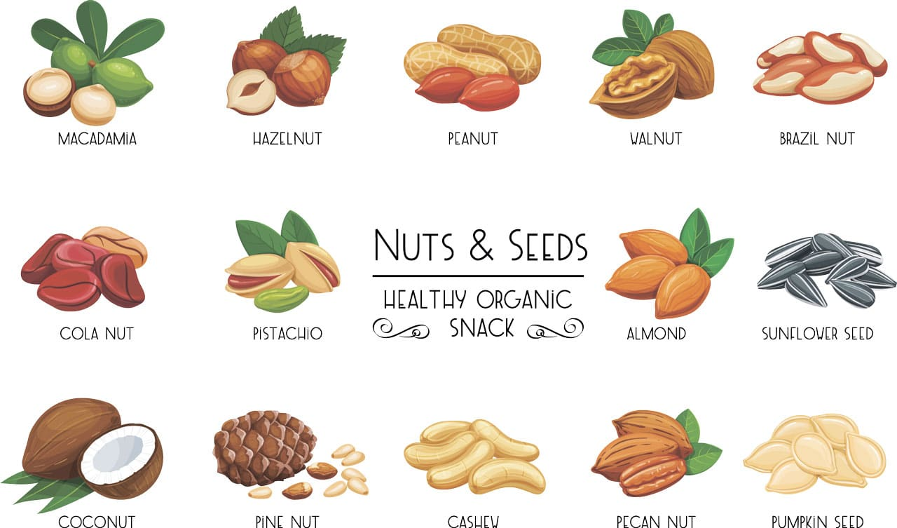 Nuts and Seeds. Healthy Organic Snack